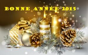 happy-new-year-shop_287917