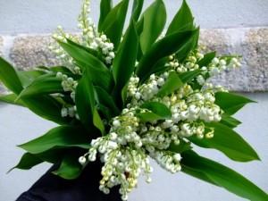 667667_JFUA5NEEVGA6A2AS23CJCZFTVFGDN4_bouquet-de-muguet-2010-640x480_H075818_L