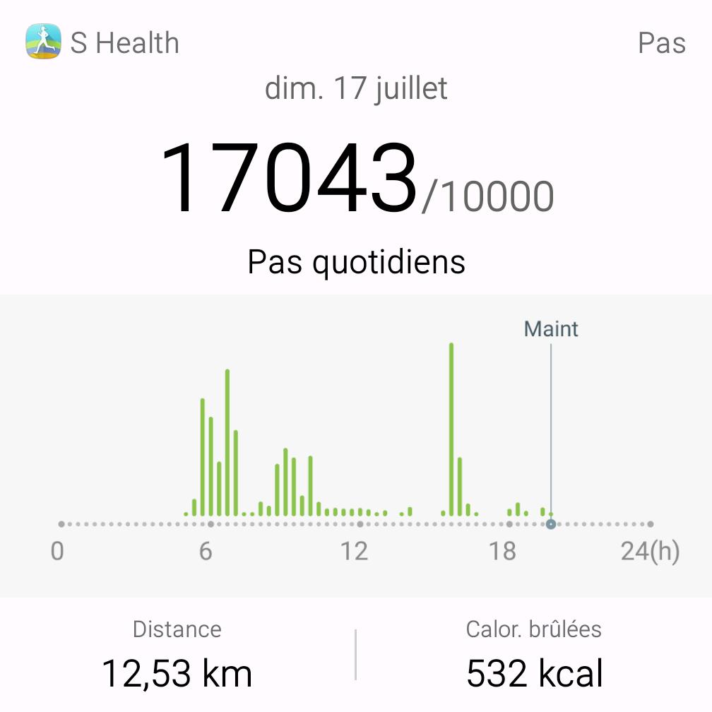 Nombre De Pas A Faire Par Jour